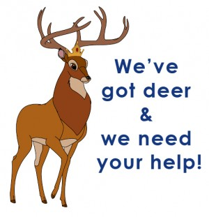 We Got Deer
